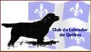 logo CLQ